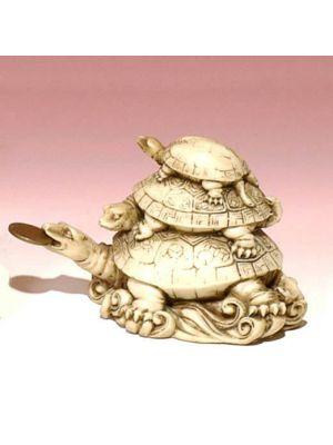 White Figure Money Turtles 3