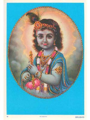 Bal Krishna  9.75